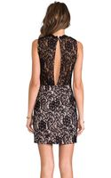 Dolce Vita Abrianna Stretch Floral Lace Dress in Black - Lyst