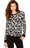 Kensie Long-sleeve Scoop-neck Animal-print Sweater - Lyst