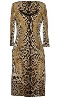 Roberto Cavalli Kneelength Dress - Lyst