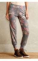 Nation Floral Printed Pants - Lyst