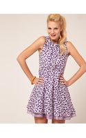 ASOS Collection Asos Skater Dress in Leopard Print - Lyst