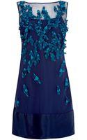 Coast Pashona Dress - Lyst