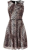 Oasis Leopard Print Skater Dress - Lyst