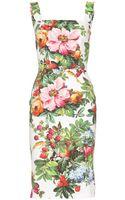 Dolce & Gabbana Print Dress - Lyst