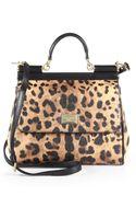 Dolce & Gabbana Sicily Leopardprint Shoulder Bag - Lyst