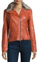 Bagatelle Fauxfur Trimmed Leather Biker Jacket - Lyst