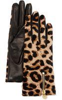 Diane Von Furstenberg Leopardprint Calf Hair  Leather Gloves - Lyst