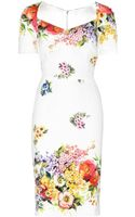 Dolce & Gabbana Printed Silkcrepe Dress - Lyst