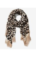 Express Overlapping Leopard Print Quad Scarf - Lyst