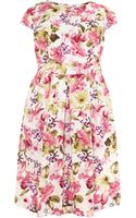 Samya Floral Printed Fit and Flare Dress - Lyst