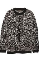 Roberto Cavalli Oversized Leopard Print Knitted Sweater - Lyst