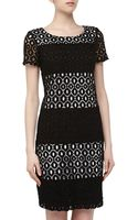 Muse Medallion Crochet Striped Dress - Lyst