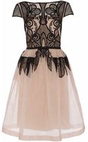 Temperley London Maxime Dress - Lyst