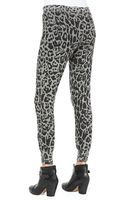 Pam & Gela Dropfront Leopardprint Sweatpants - Lyst