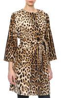Dolce & Gabbana Leopardprint Cashmere Selfbelt Coat - Lyst