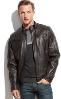Calvin Klein Leather Moto Jacket - Lyst
