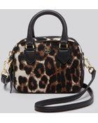 Tory Burch Crossbody - Robinson Leopard Print Calf Hair Shrunken Boxy - Lyst