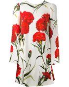 Dolce & Gabbana Carnation-Print Dress - Lyst