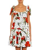 Dolce & Gabbana Carnation And Polka-Dot Print Dress - Lyst