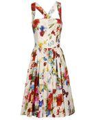 Dolce & Gabbana Butterfly-print Cotton Dress - Lyst