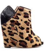 Zara Leopard Wedge - Lyst