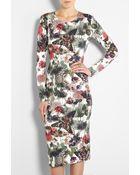 Preen By Thornton Bregazzi Moth Print Elena Jersey Dress - Lyst