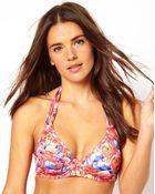 Asos Flamingo Print Halter Plunge Fuller Bust Bikini Top - Lyst