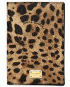 Dolce & Gabbana Leopard Printed Passport Holder Wallet - Lyst