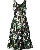 Dolce & Gabbana Orange Blossom Print Dress - Lyst