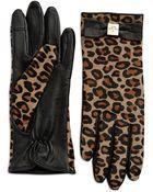 Kate Spade Cheetah Print Calf Hair & Leather Gloves - Lyst