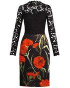 Dolce & Gabbana Lace And Carnation-Print Brocade Dress - Lyst