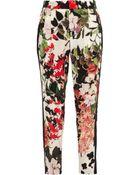 Roberto Cavalli Eden Floral-Print Silk Tapered Pants - Lyst