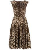 Dolce & Gabbana Leopard Print Dress - Lyst