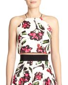 Milly Printed Cropped Halter Top - Lyst
