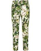 Dolce & Gabbana Floralprint Cottonblend Tweed Straightleg Pants - Lyst