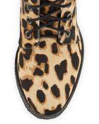 Diane von Furstenberg Ace Leopard-Print Calf Hair Combat Boot - Lyst