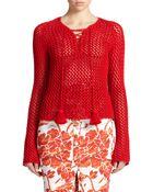 Altuzarra Sitar Open-Knit Pullover - Lyst