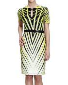 Roberto Cavalli Kuda Printed Jersey Half Sleeve Dress - Lyst