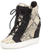 Giuseppe Zanotti Snake-Embossed Metallic-Painted Wedge Sneaker - Lyst