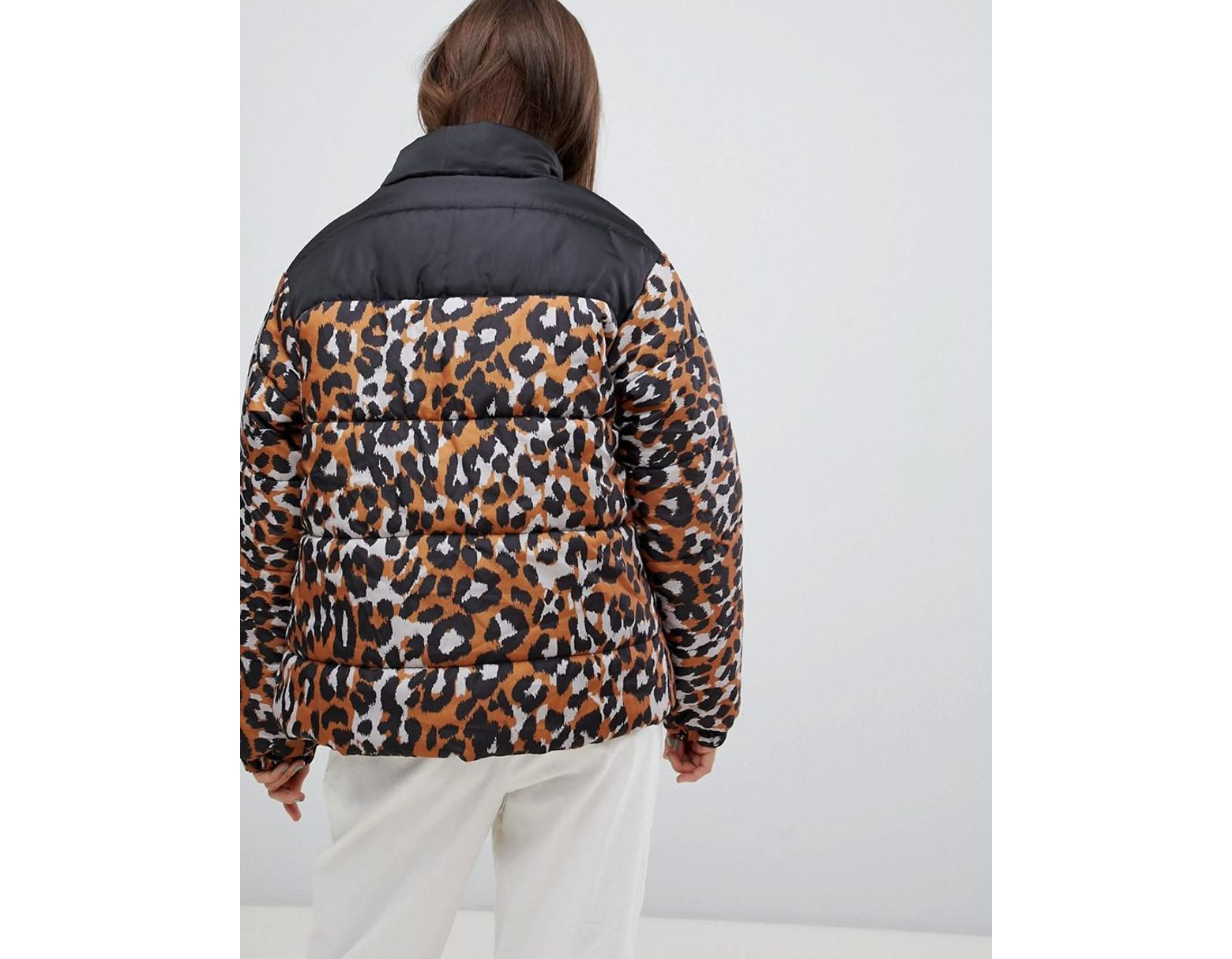 eda8527eef0f Daisy Street Padded Jacket With Ring Pull In Leopard Print in Brown - Lyst