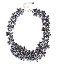Coast - Blue Foxy Fenella Necklace - Lyst