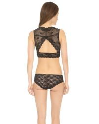 Free People - Essential Lace Evangelina Crop Bra - Black - Lyst