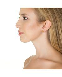 Sarah Chloe | Metallic Lia Stud Earring | Lyst
