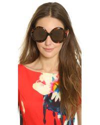 Preen By Thornton Bregazzi - Brown Eltham Sunglasses - Lyst