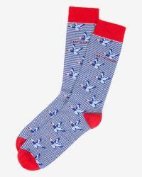 Ted Baker - Blue Bird Print Socks - Lyst