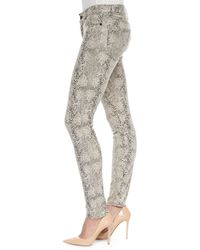 CJ by Cookie Johnson - Natural Joy Python-print Knit Leggings - Lyst