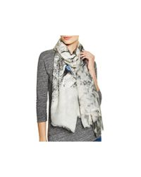 Lily and Lionel - Gray Oberon Scarf - Lyst