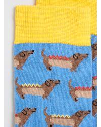TOPMAN - Blue Sausage Dog in A Bun Socks for Men - Lyst