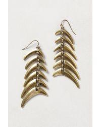 Anthropologie - Metallic Staghorn Earrings - Lyst