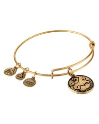 ALEX AND ANI | Metallic Capricorn Ii | Lyst